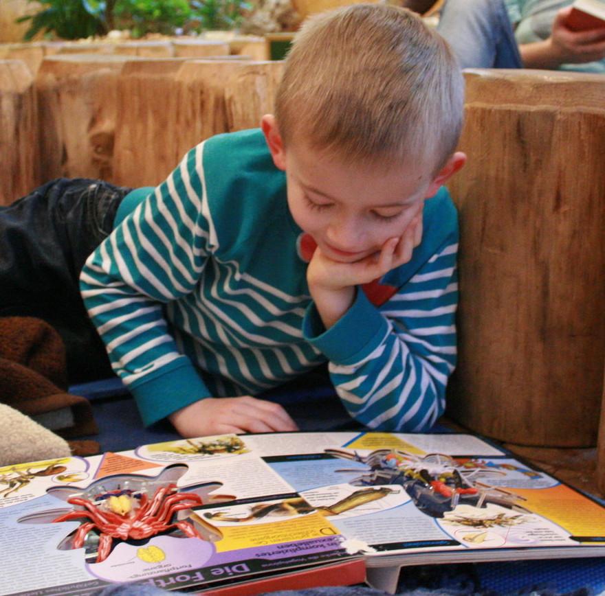 NEU: Zoo-Natur-Erlebnistage für Schulanfänger – schon 11 Klassen mit dabei