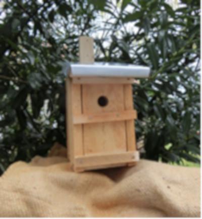 Kinder tun was für einheimische Vögel - Nistkasten-Bauaktion am 8. März