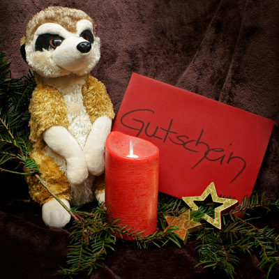Zoo-Weihnachtsgeschenk-Aktion ab 1. Advent